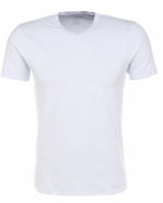 FELIP t-shirt with v-neck, белье муж. (002) бел
