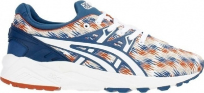 Кроссовки ASICS GEL-KAYANO TRAINER EVO фото 20322
