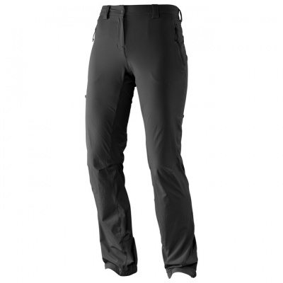 Брюки SALOMON WAYFARER INCLINE PANT W BLACK фото 26977